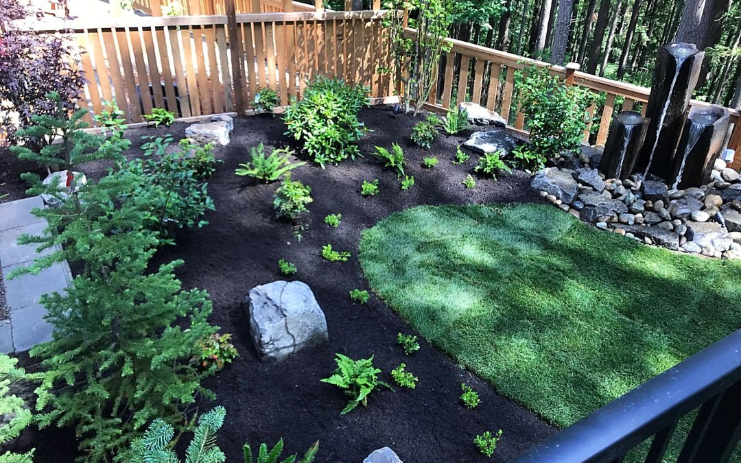 New Landscape Design & Construction in Issaquah, WA