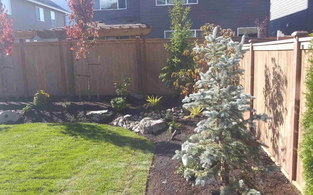 Hardscape & Plant Design in North Bend, WA