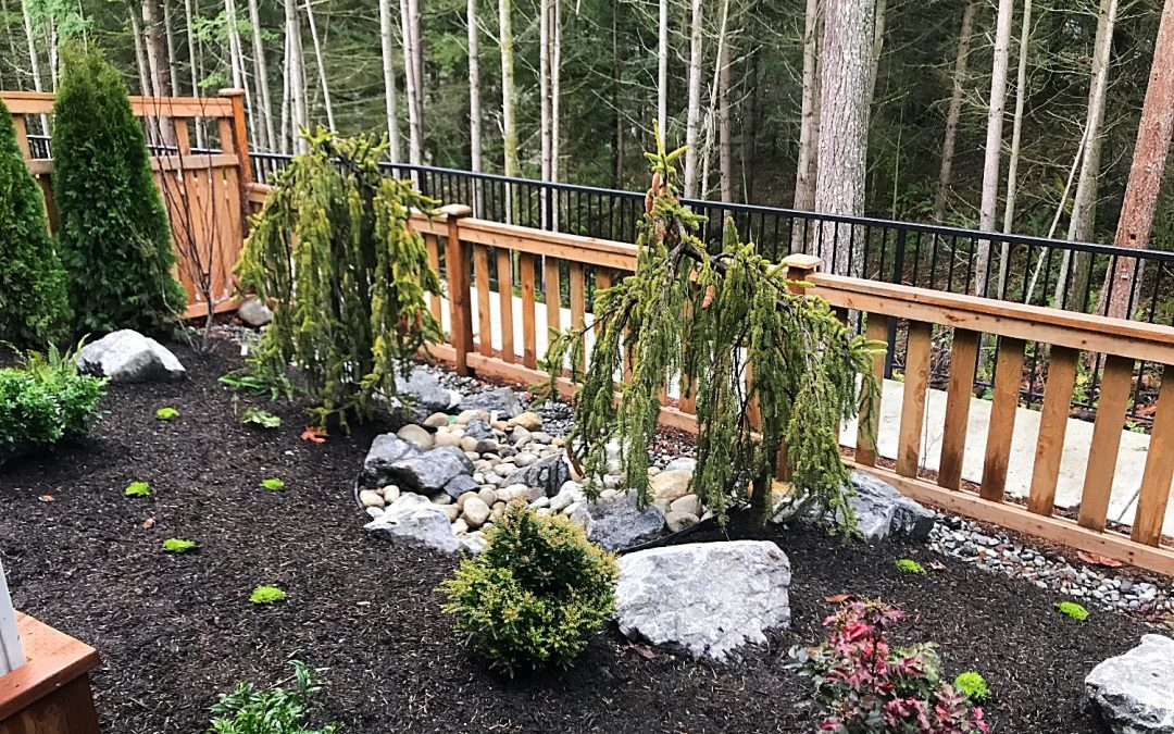 New Construction & Plant Design in Issaquah, WA